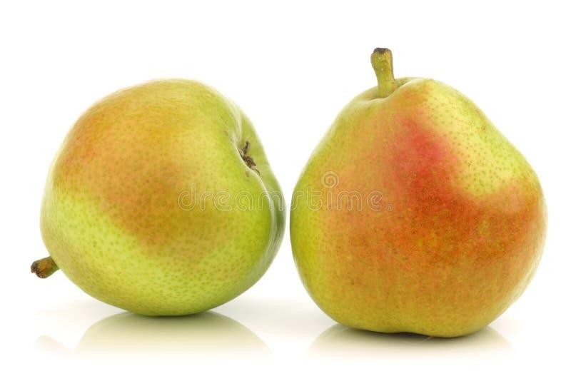 anjou pears två arkivfoton
