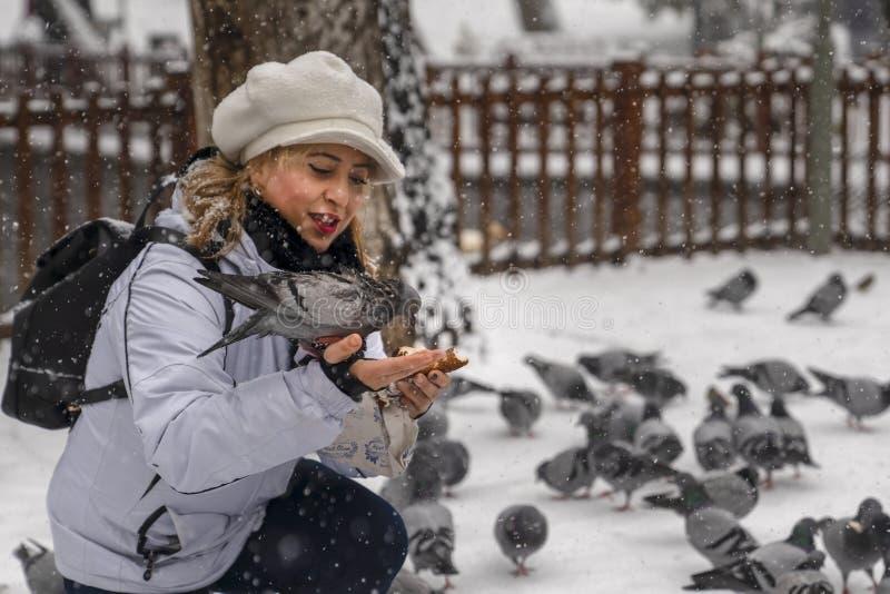 Ankara/die Türkei 6. Dezember 2018: Fütterungstaube der Frau auf seiner Hand mit simit, das türkischer Bagel ist stockfotografie