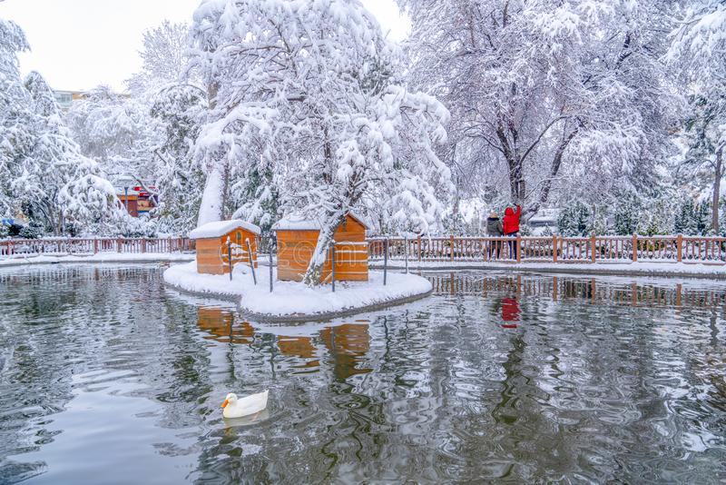 Ankara, grudzień 26 2018/: Kugulu park jest popularnym miejscem cieszyć się dzień Kugulu park pod śniegiem w zimie obraz stock