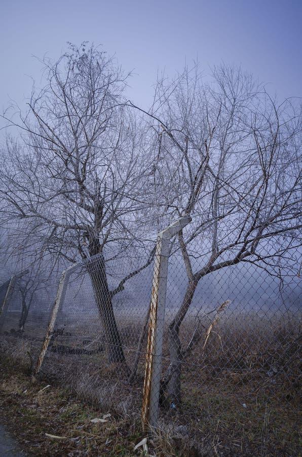 Ankara, jezioro, droga, błękit, zima zdjęcia royalty free