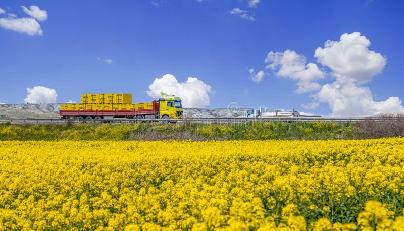 Ankara/Turquía 24 de abril de 2019: Campos amarillos del canola con la visión panorámica hermosa y y una pista amarilla en el fon foto de archivo