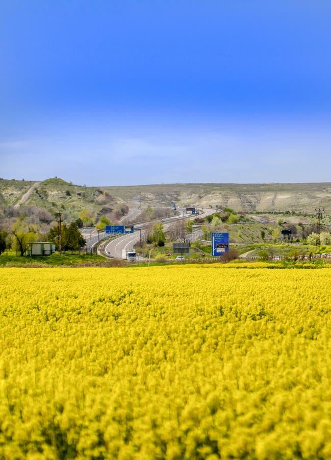 Ankara/Turquía 24 de abril de 2019: Opinión amarilla del campo del canola con tráfico en la carretera de Ankara Eskisehir imagen de archivo
