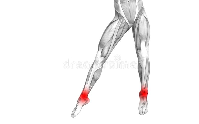 Ankle human anatomy with red hot spot inflammation. Conceptual ankle human anatomy with red hot spot inflammation or articular joint pain for leg health care stock illustration