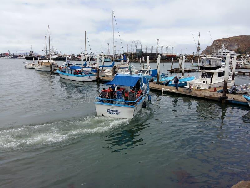 Ankommendes Boot stockbilder