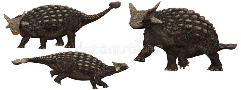 Ankylosaurus libre illustration