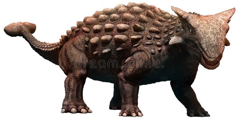Ankylosaurus ilustração stock
