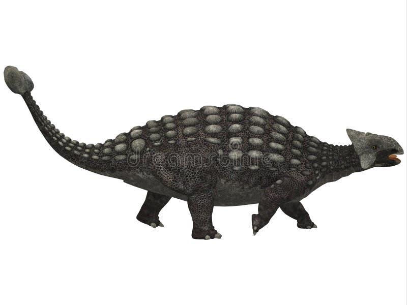 Ankylosaurus no branco ilustração stock
