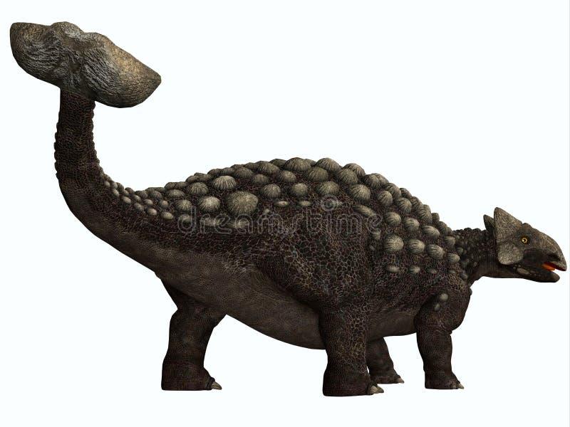 Ankylosaurus no branco ilustração royalty free