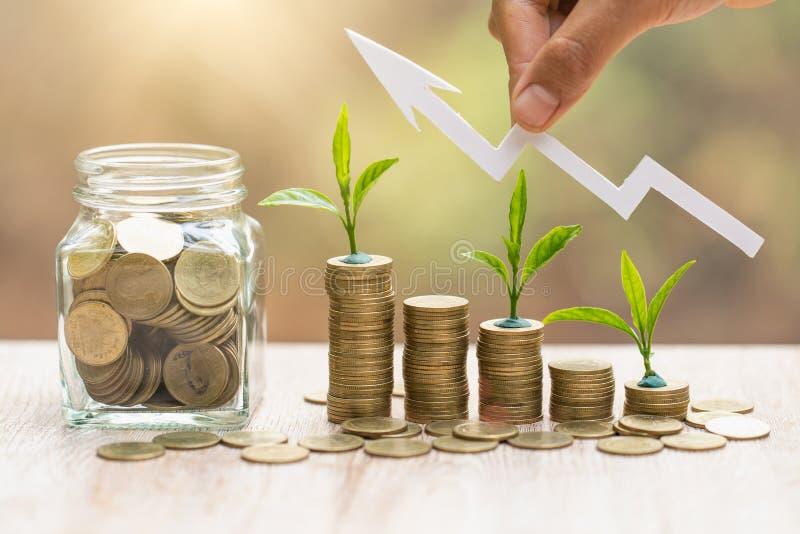 Anlage, die im Münzenglasgefäß für die Geldeinsparung und -investition finanziell, -konzept für Geschäft, -innovation, -wac lizenzfreie stockfotos