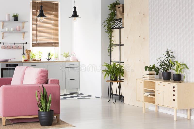 Anlagen auf hölzernem Schrank im weißen flachen Innenraum mit rosa Sofa nahe bei Kochnische Reales Foto lizenzfreies stockfoto