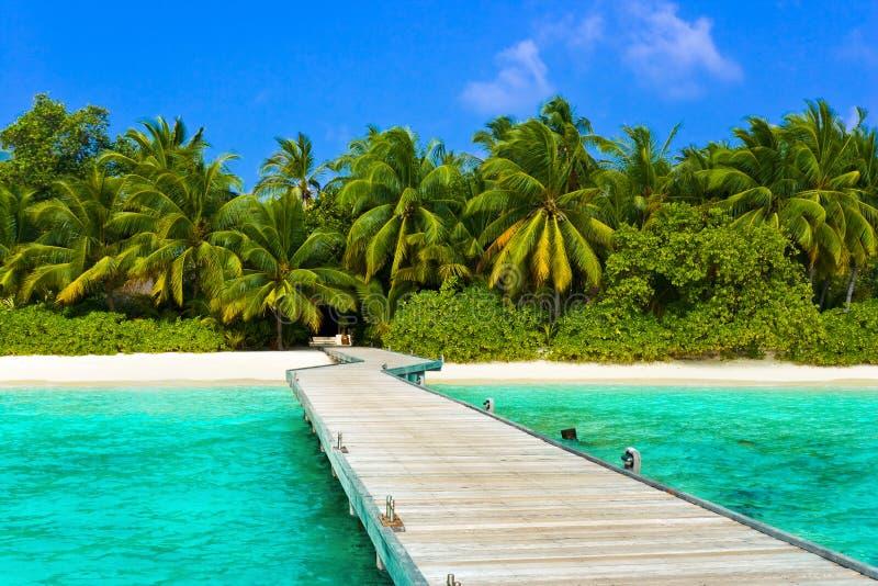 Anlegestelle, Strand und Dschungel stockfoto