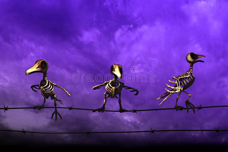 anmärkningar för bakgrundsslagträhalloween månsken Skelett- fåglar blå sky för bakgrund royaltyfria foton