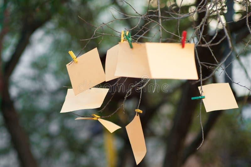 Anmerkungen über einen Baumast, orange Papier hängt am Baum auf der Klemme stockfoto