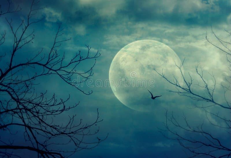 Anmerkungen und ein Baum in einem Mondschein vektor abbildung