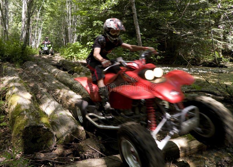 Années de l'adolescence conduisant ATVs dans la forêt photo libre de droits
