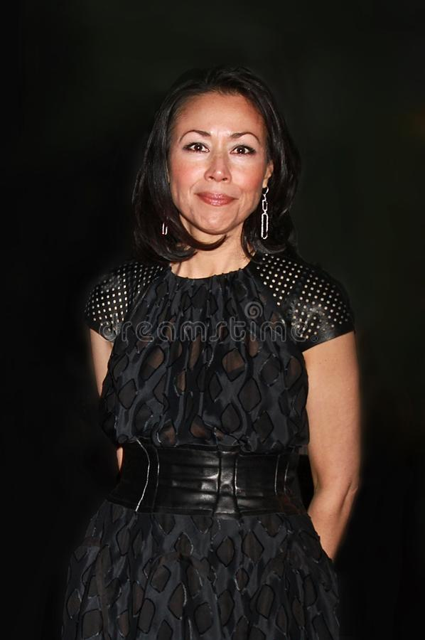 Ann Curry imagens de stock royalty free