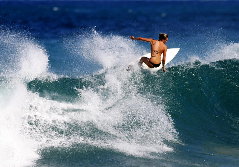 Anna van Surfer Gebraden gerecht dat in Hawaï surft stock foto's