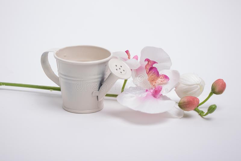 Annaffiatoio e un mazzo di fiori fotografia stock