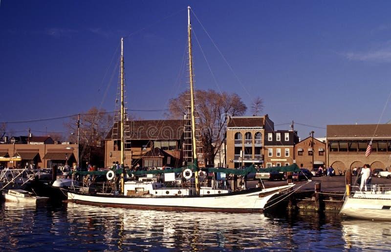 annapolis härlig segelbåt fotografering för bildbyråer