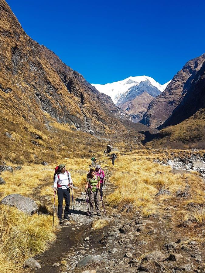 Annapurna Base Camp hiking trek, Himalayas, Nepal. November, 2018. Hikers on the way back from ABC royalty free stock photography