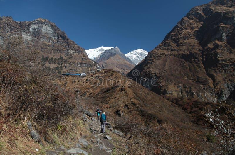 Annapurna grundläggande läger nepal himalaya arkivfoto