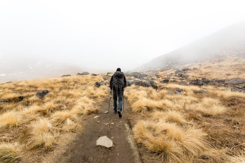 Annapurna Nepal, Listopad, - 09, 2018: Turysta iść w górę sposobu na Annapurna Podstawowy obóz, himalaje, Annapurna konserwacji t obraz stock