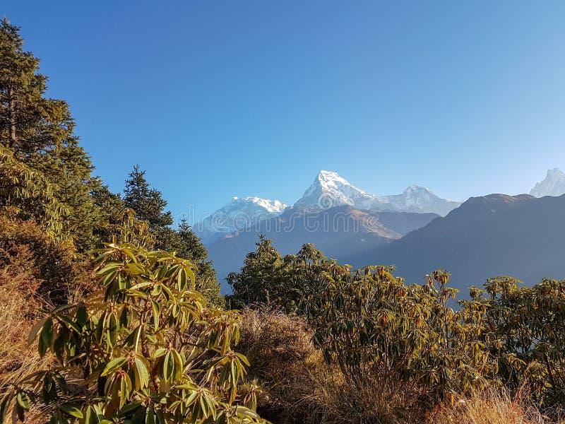 Annapurna Podstawowy obóz wycieczkuje wędrówkę, himalaje, Nepal Listopad, 2018 Panoramiczny widok Dhaulagiri pasmo górskie zdjęcia royalty free