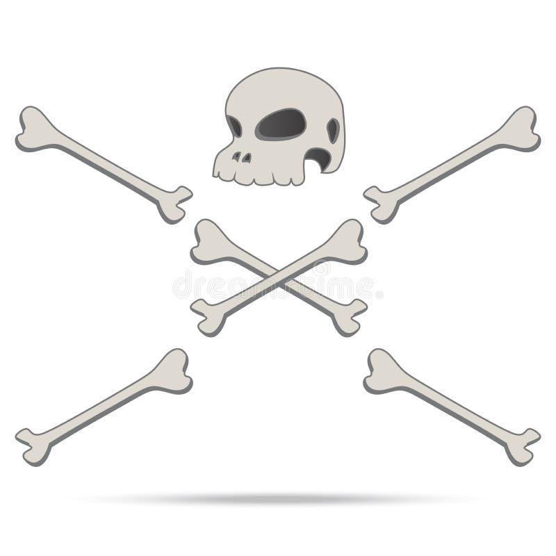 Annata dell'essere umano e dell'osso del cranio  illustrazione vettoriale