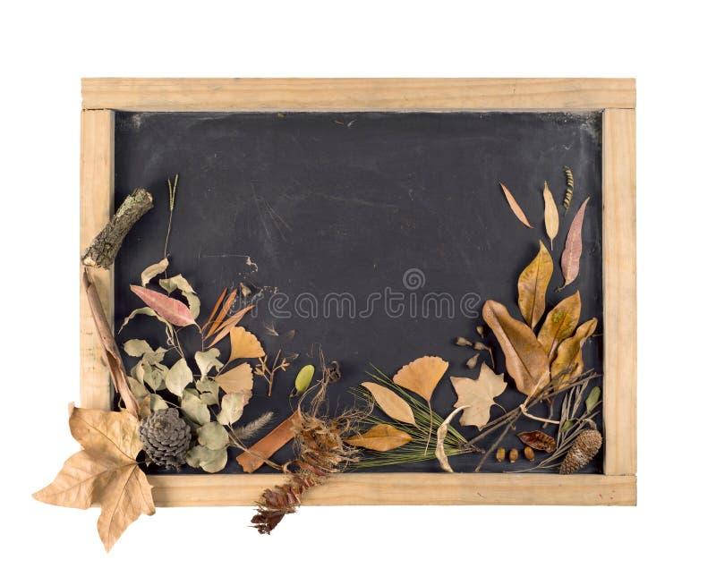 Annata di autunno della foglia della lavagna della composizione in caduta immagine stock