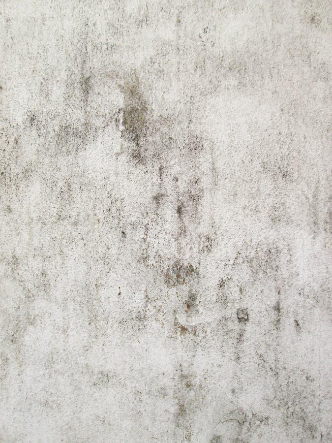 Annata o priorità bassa bianca grungy di cemento naturale o di vecchia struttura di pietra come retro parete del reticolo È un co fotografia stock