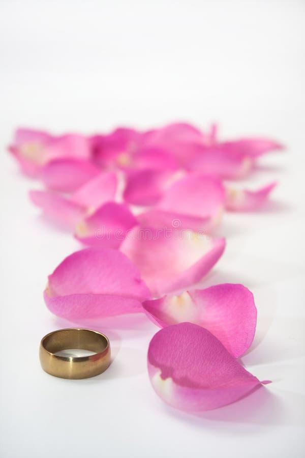 Anneau d'or et pétales de rose roses comme chemin photographie stock