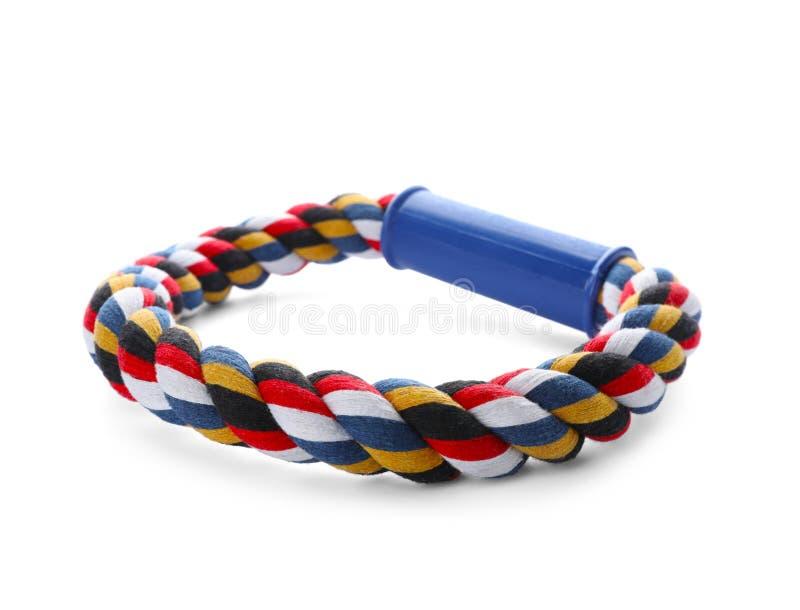 Anneau de corde pour le chien photo stock