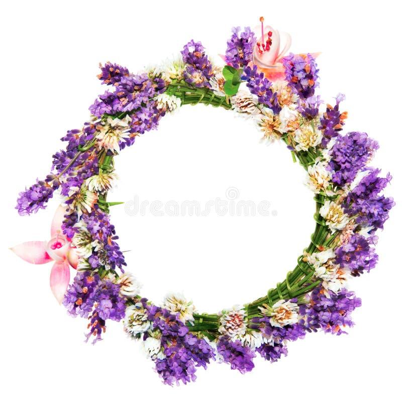 Anneau des fleurs, de la lavande et du trèfle images stock