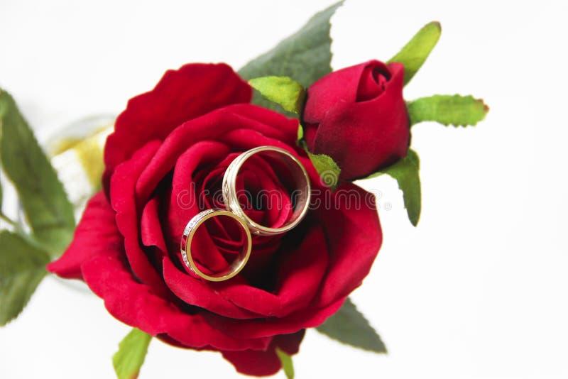 Anneaux d'or de concepteur pour les jeunes mariés sur le leur un jour du mariage photos libres de droits