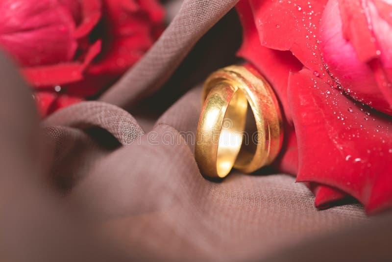 Anneaux de mariage d'or avec le fond de roses rouges Concept d'engagement photo stock