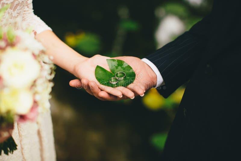 Anneaux de mariage de prise de nouveaux mariés image stock