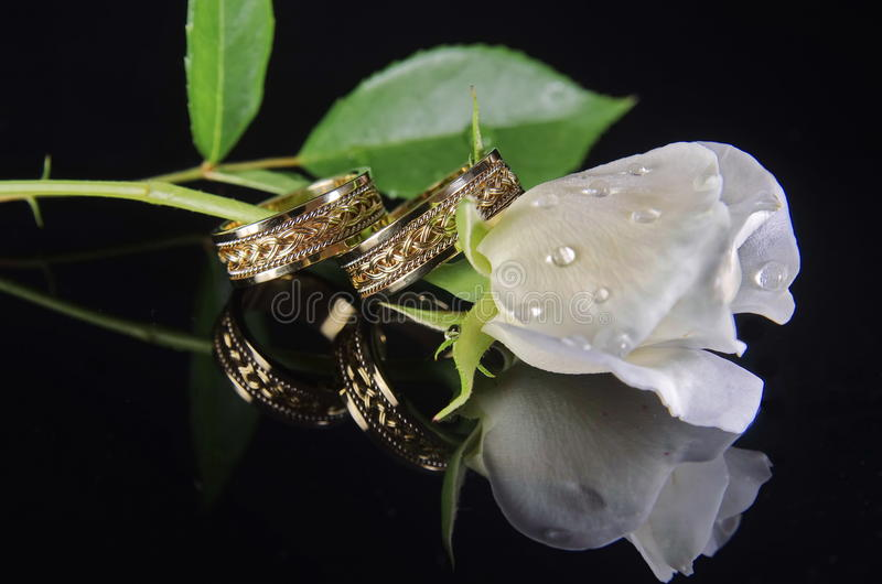Anneaux de mariage et rose 3 de blanc photos libres de droits