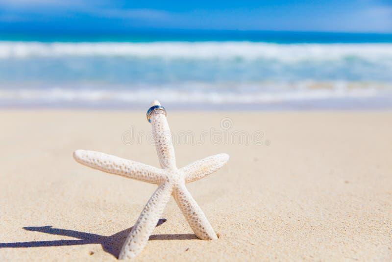 Anneaux de mariage sur des étoiles de mer photos libres de droits