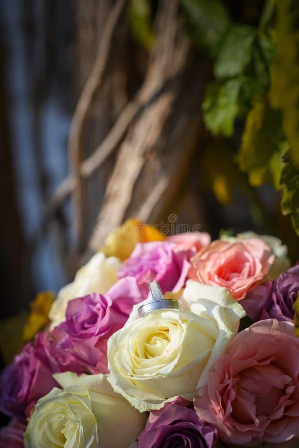 Anneaux de noces d'argent blancs sur le bouquet des roses de rose et blanches Feuilles à l'arrière-plan photos stock