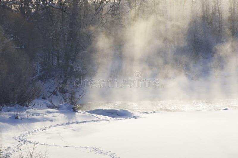 Annebbi sopra il fiume con bella luce solare nell'inverno immagine stock