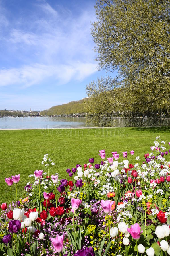Annecy lake and city with flowers royalty free stock photos