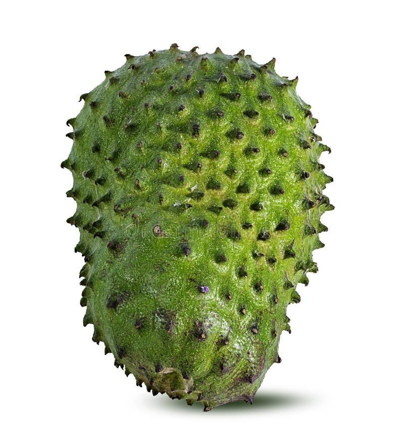 Annona Muricata o oursop frutifica Sugar Apple, maçã do ustard isolada fotos de stock royalty free