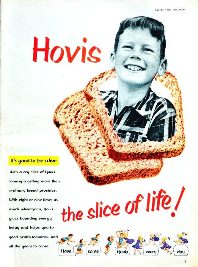 Annonce 1956 de magazine de pain de Hovis de cru image stock