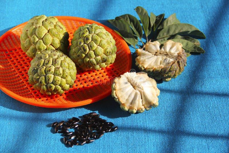Annone, seine Samen und Blätter auf blauem Hintergrund lizenzfreie stockfotografie