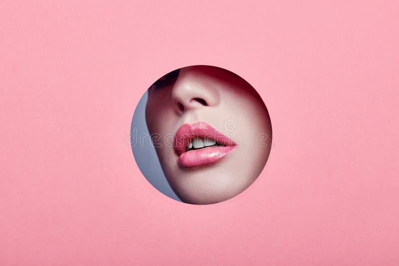 Annonsera ljus rosa färg för härliga fylliga kanter, ser kvinnan i kulört rosa papper för hålet, skönhetsalong Makeup som annonse royaltyfri foto