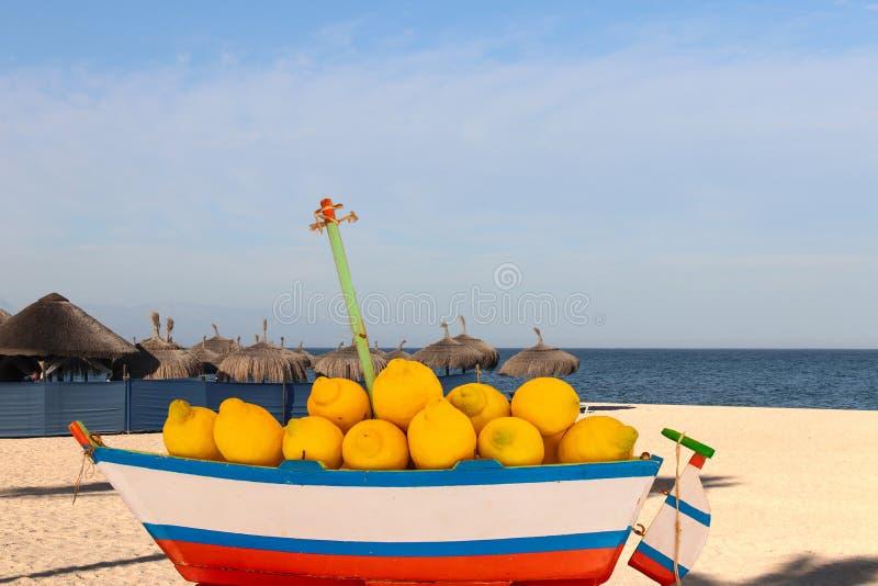 Annonsering av nya citroner eller resa Sammansättning av en trämodell av ett segla skepp laden med nya citroner, framme av royaltyfria bilder