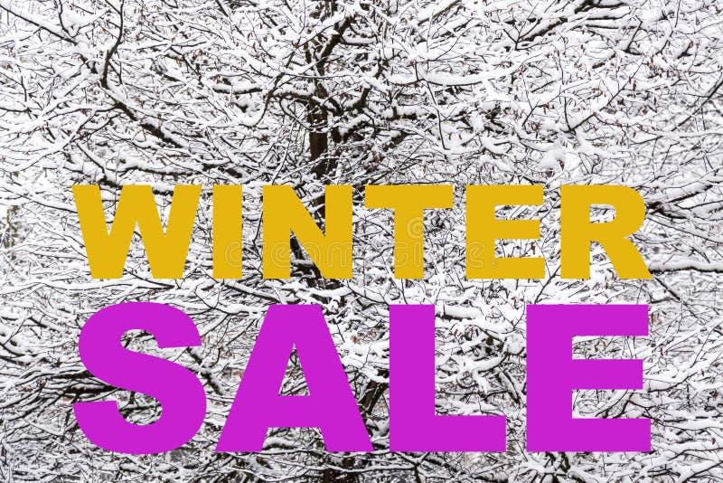 Announcement for the winter season sale stock photos