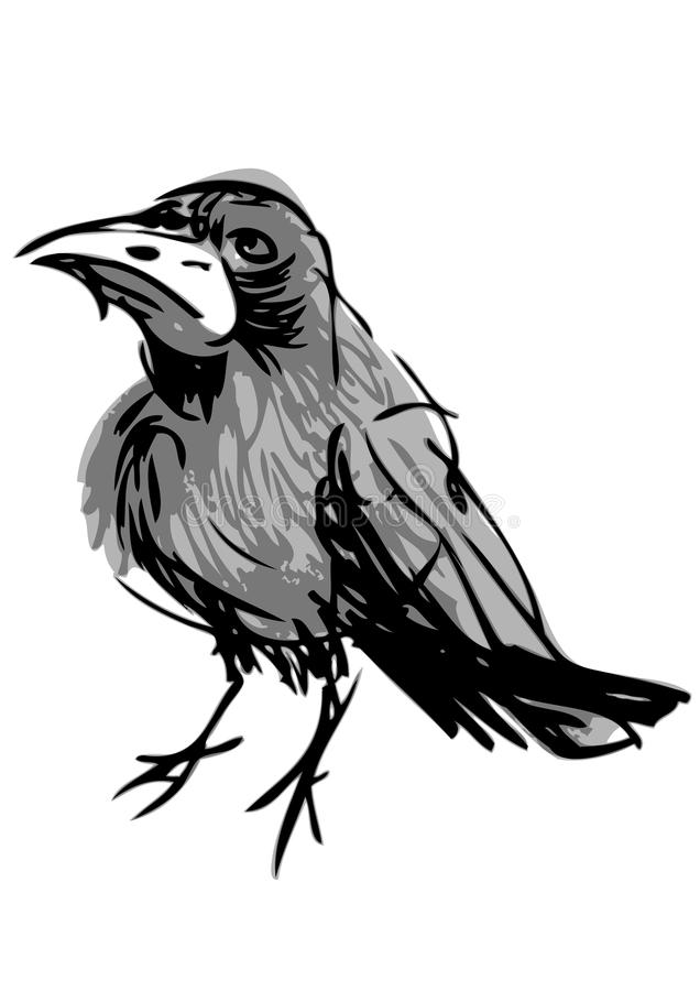 Annoyed crow stock illustration