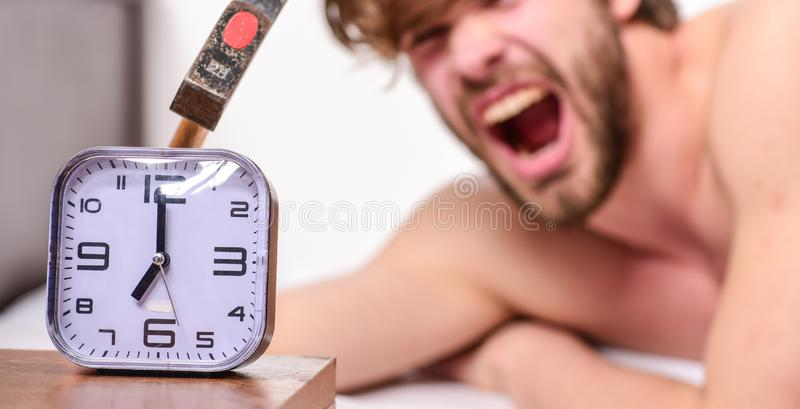 Annoying ringing alarm clock. Man bearded annoyed sleepy face lay pillow near alarm clock. Guy knocking with hammer. Alarm clock ringing. Break discipline royalty free stock images