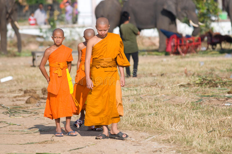 The Annual Elephant Roundup in Surin, Thailand. SURIN - NOVEMBER 21: Three young monks watching the elephants during The Annual Elephant Roundup on November 21 royalty free stock photos
